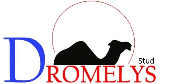 www.dromelys.com